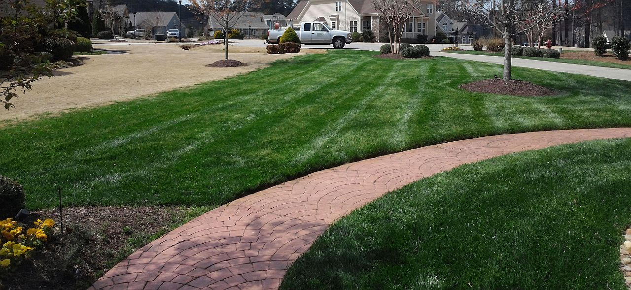 Organically Maintained Fescue Lawn 1280x589
