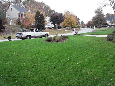 organic lawn 400x300